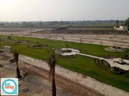 Al Noor Orchard 07