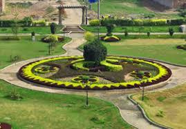 Al Noor Orchard 10