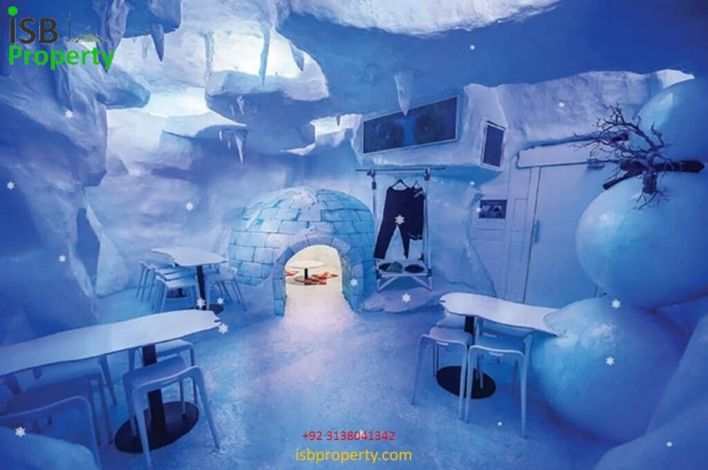 The Ice Mall Ice Museum