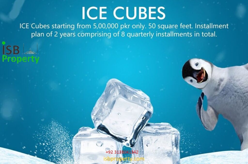 The Ice Mall Ice Cubes